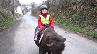 Best Pony Rider?
