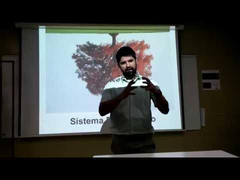 Anatomia general - sistema respiratorio via superior parte 1