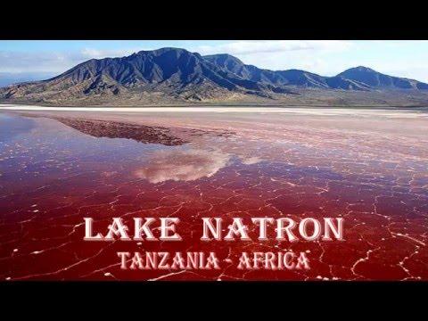 LAKE  NATRON  - TANZANIA  -  AFRICA