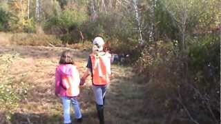 German Shorthaired Pointers Pheasant Hunting Nh 2012 Kids Brier Win Point.mpg