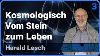 Vom Stein zum Leben  • Kosmologisch | Harald Lesch (Vortrag Teil 3)