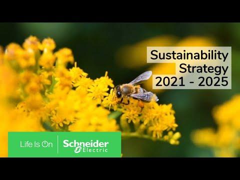 Sustainability Strategy 2021-2025   Schneider Electric