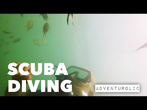 First Scuba Diving experience at Malvan