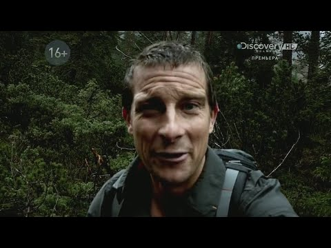 Bear Grylls Breaking Point   Season 1 Episode 6   Trees and Insects