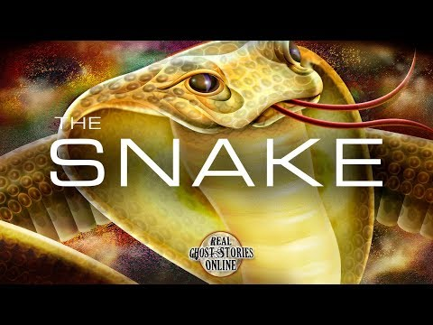 The Snake   Ghost Stories, Paranormal, Supernatural, Hauntings, Horror