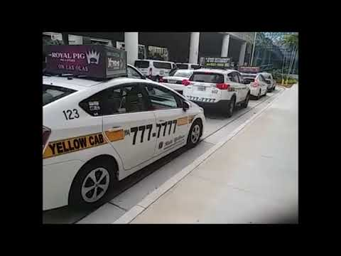 Phone Numbers on Taxis