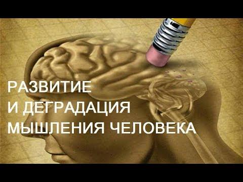 Развитие и деградация мышления человека. Александр Белов