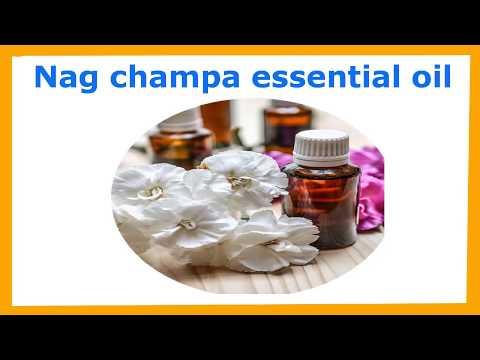 nag-champa-essential-oil