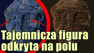 Zagadkowa kamienna figura odkryta na polu w USA