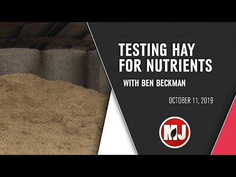 Testing Hay for Nutrients | Ben Beckman | October 11, 2019