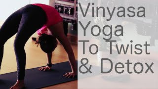 Free Yoga Class Vinyasa Yoga to Twist, Detox and Purify With Fightmaster Yoga