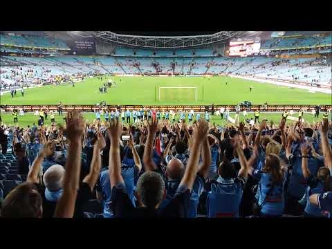 Sydney FC's Cove celebrate with the team following 5-0 derby win vs WSW, 2017/18 A-League