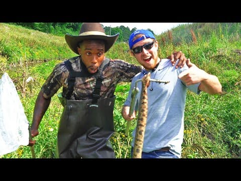 CATCH 'N COOK VENOMOUS COTTONMOUTH SNAKE! CHEF O NASTY Country Style!