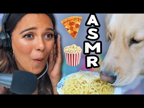 MY DOG TRIES ASMR Eating popcorn pizza raw honeycomb peanut butter tingles & cuteness
