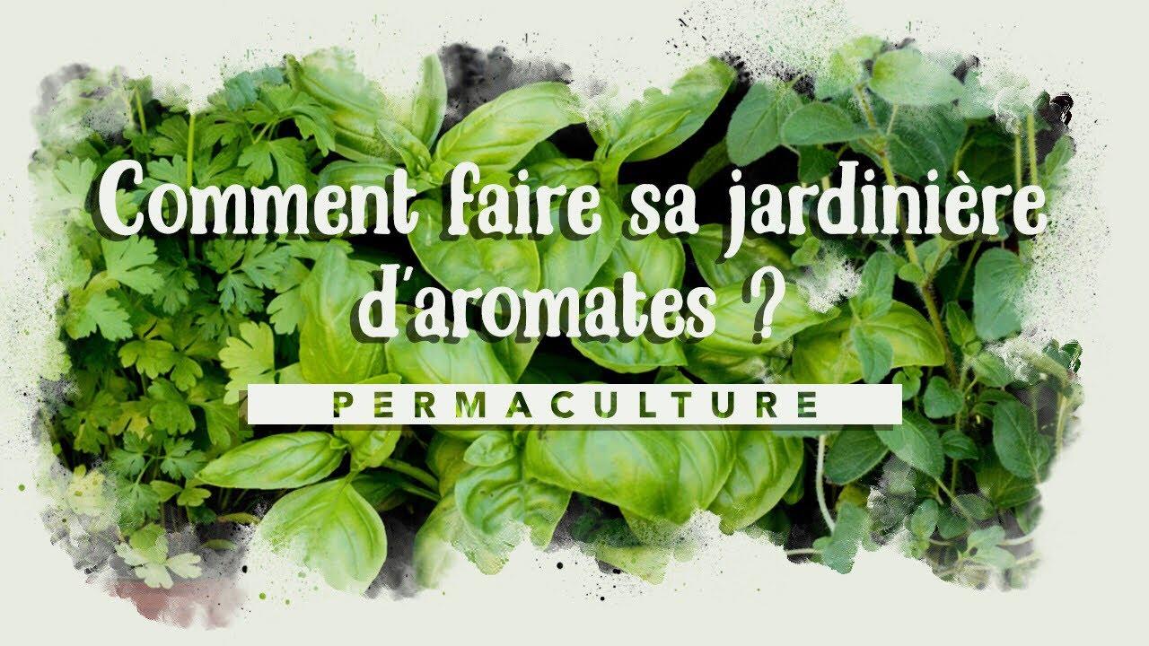Plantes Aromatiques En Jardinière comment faire sa jardinière d'aromatiques ?