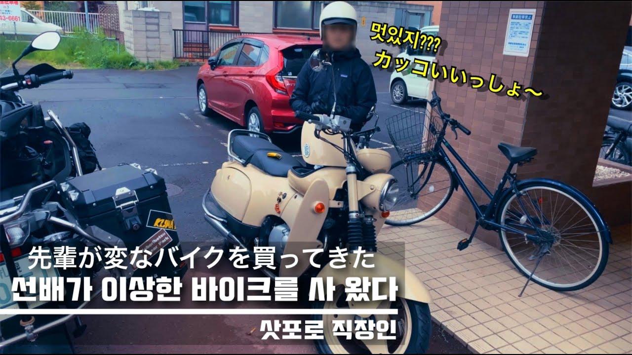삿포로 직장인 Moto Vlog I 선배가 이상한 바이크를 사 왔다 I 바이크여행 I R1200GSA I 스즈키 suzuki SW-1 I 일본회사원 Vlog I 홋카이도 I 북해도