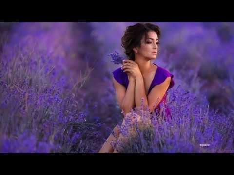 Сиреневый рай -  / Ennio Morricone /