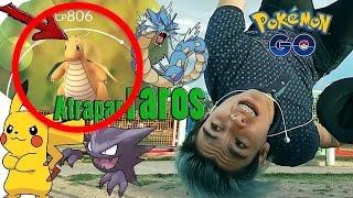 (TRUCO) ¡CÓMO ENCONTRAR TODOS LOS POKÉMON RAROS! 🙉 - [Pokémon Go] | Criss Codek
