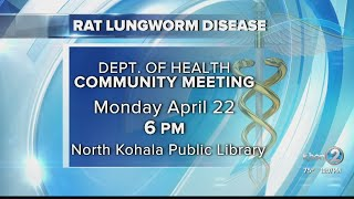 Department of Health confirms second rat lungworm disease case on Hawaii island in 2019