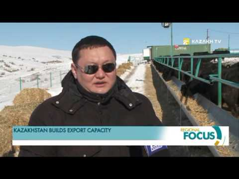 Kazakhstan builds export capacity