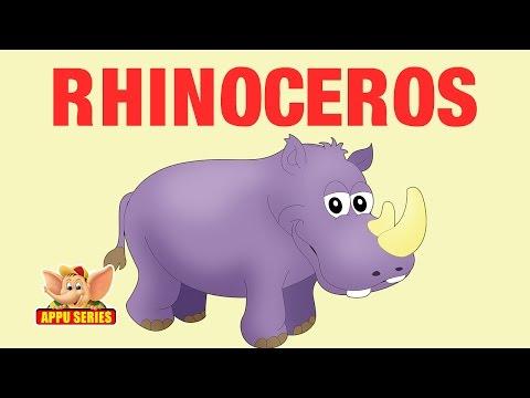 Animal Facts - Rhinoceros