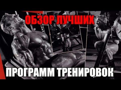 ОБЗОР ЛУЧШИХ ПРОГРАММ ТРЕНИРОВОК