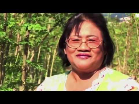Moringa Oleifera Discovery Channel Documentary - Moringa BigSecrets