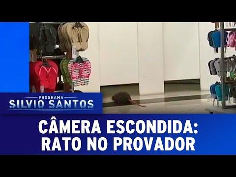 Câmera Escondida (08/05/16) - Rato no Provador