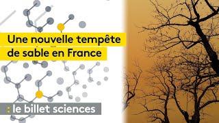 Un deuxième nuage de sable du Sahara traverse la France