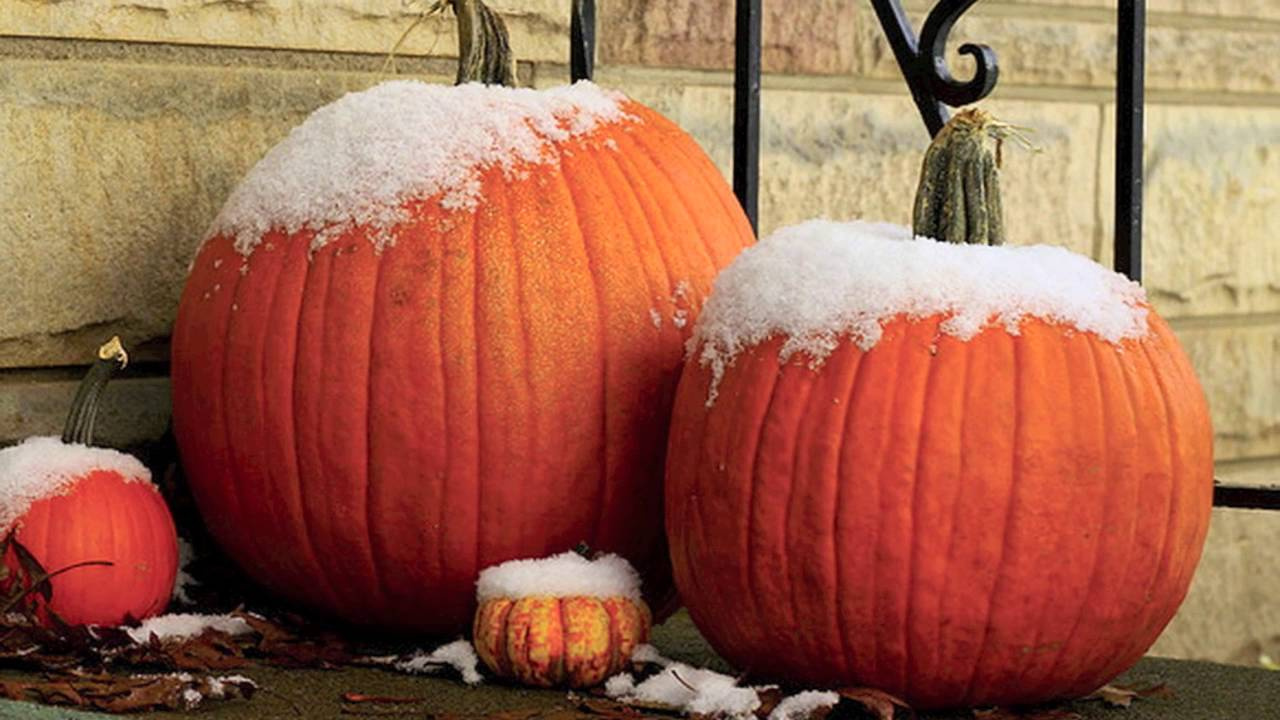 frost is on the pumpkin poem