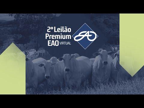 LOTE 01 - 2 º Premium EAO Virtual - Matrizes