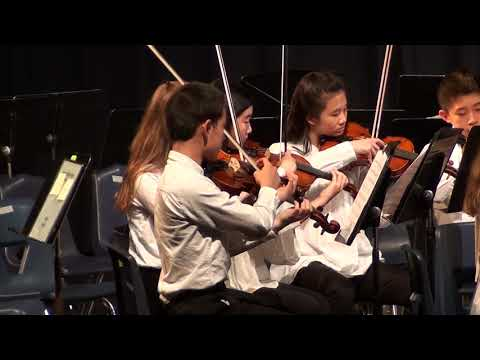 Wayland Middle School Orchestra