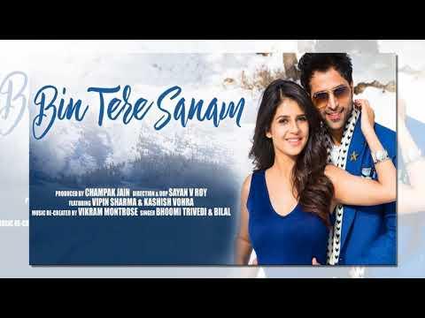 Bin Tere Sanam | Vipin Sharma| Kashish Vohra  Bhoomi Trivedi | Hindi full Song | 2018