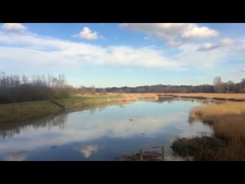 Suffolk UK Winter 2015/2016