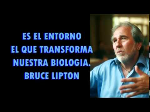 bruce lipton biologia przekonań pdf