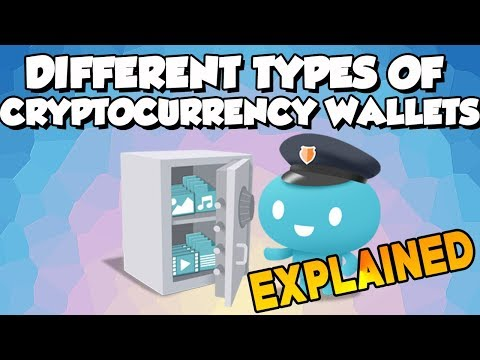 Different Types of Cryptocurrency Wallets Explained In 2 Minutes