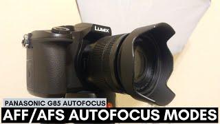 Panasonic G85 Autofocus AFS/AFF Modes (Face/Eye, Tracking, 49 Area, Custom, 1 Area, Pinpoint)