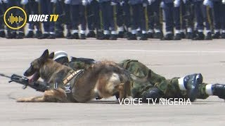 Brillant Security Performance By Nigeria Airforce Dogs