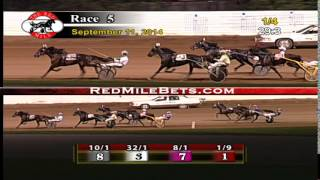 Red Mile Racetrack Race 5 09-11-14