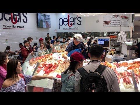 Walk through of Sydney Fish Market in Sydney, Australia