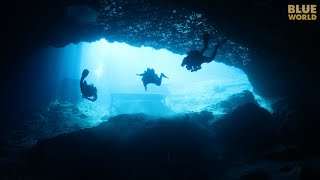 Blue Grotto in Florida! | JONATHAN BIRD