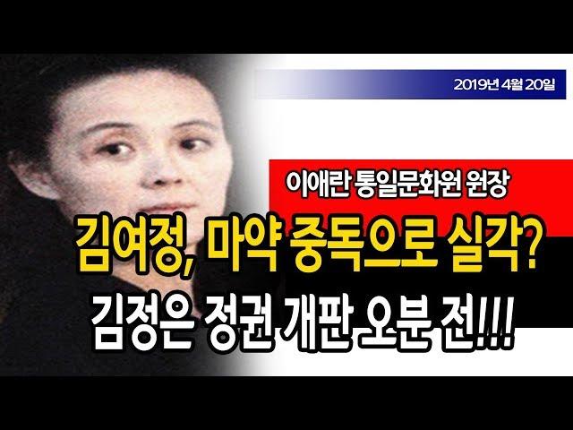 특종 / 김여정 마약 중독으로 실각!!! (이애란 박사) / 신의한수