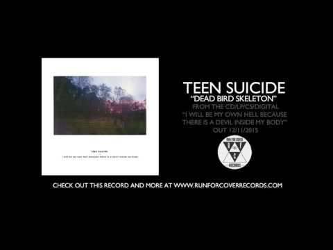 """teen suicide - """"dead bird skeleton"""" (Official Audio)"""