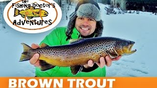Jaw Jacker Ice Fishing Quarry Lake Brown Trout
