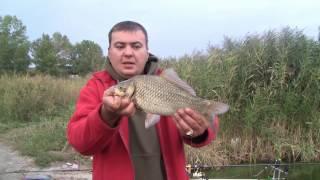 Семейная рыбалка на реке Самара(Днепр)Неизданное 4(Дневник рыболова)(Друзья в этом видео нет как обычно полного отчёта так как это был просто семейный выезд на рыбалку и снимали..., 2016-12-29T15:35:56.000Z)