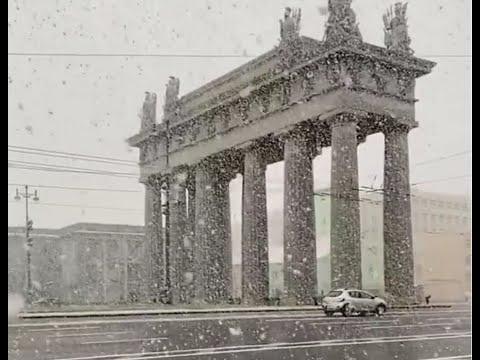 Санкт-Петербург - снегопады в середине мая! 14 мая 2020 года