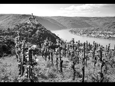 Tonny Eyks harmonika bub'n - Rheinland walzer ( 1965 )