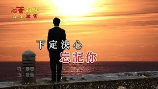 【心靈湖畔】音樂激賞-下定決心忘記你(唱哭了)