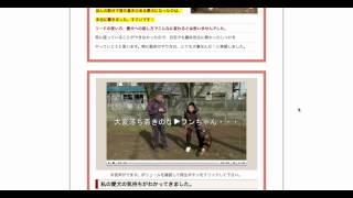 犬しつけ ドッグトレーナー藤井聡が教える犬のしつけ教室の詳細はこちら...