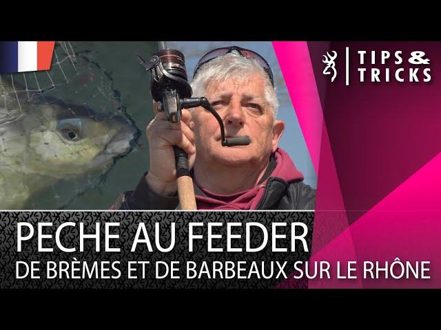 Pêche au feeder de brèmes et de barbeaux sur le Rhône